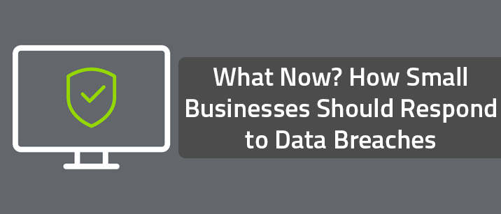 What Now? How Small Businesses Should Respond to Data Breaches