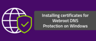 Installing certificates for Webroot DNS Protection on Windows