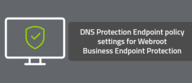 DNS Protection Endpoint policy settings for Webroot Business Endpoint Protection
