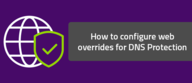 How to configure web overrides for DNS Protection