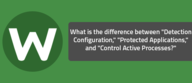 "What is the difference between ""Detection Configuration,"" ""Protected Applications,"" and ""Control Active Processes?"""