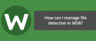 How can I manage file detection in WSA?