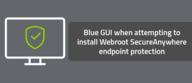Blue GUI when attempting to install the Webroot Business Endpoint Protection agent