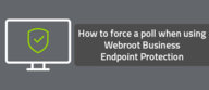 How to force a poll when using Webroot Business Endpoint Protection