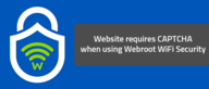 Website requires CAPTCHA when using Webroot WiFi Security