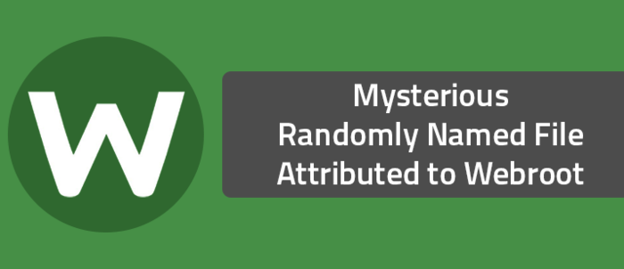 Mysterious Randomly Named File Attributed to Webroot